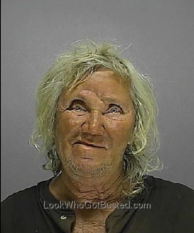 mugshots volusia county jail taiborilo27 s soup