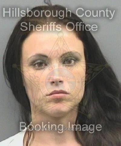 Hillsborough county mug shots